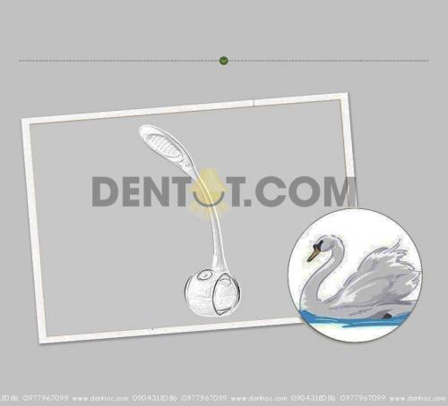 Ý tưởng thiết kế Đèn DHCCT3 từ hình ảnh Thiên nga trắng
