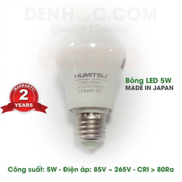Bóng LED Nhật Bản cao cấp 5W